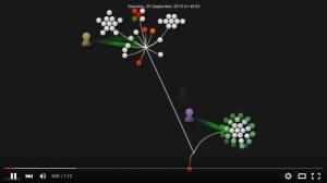 Gource visualisation of majestic data